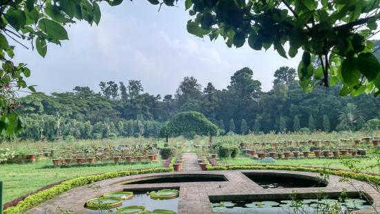 Lake-Of-National-Botanical-Garden